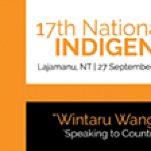 2015 - 17th National Remote Indigenous Media Festival